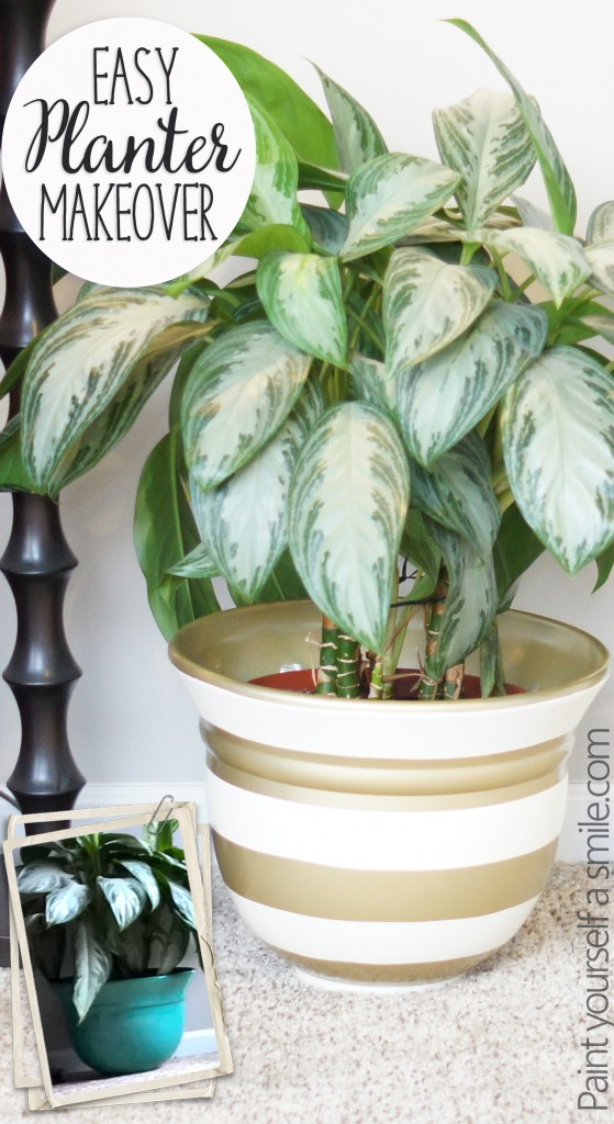 Easy Planter pot Makeover