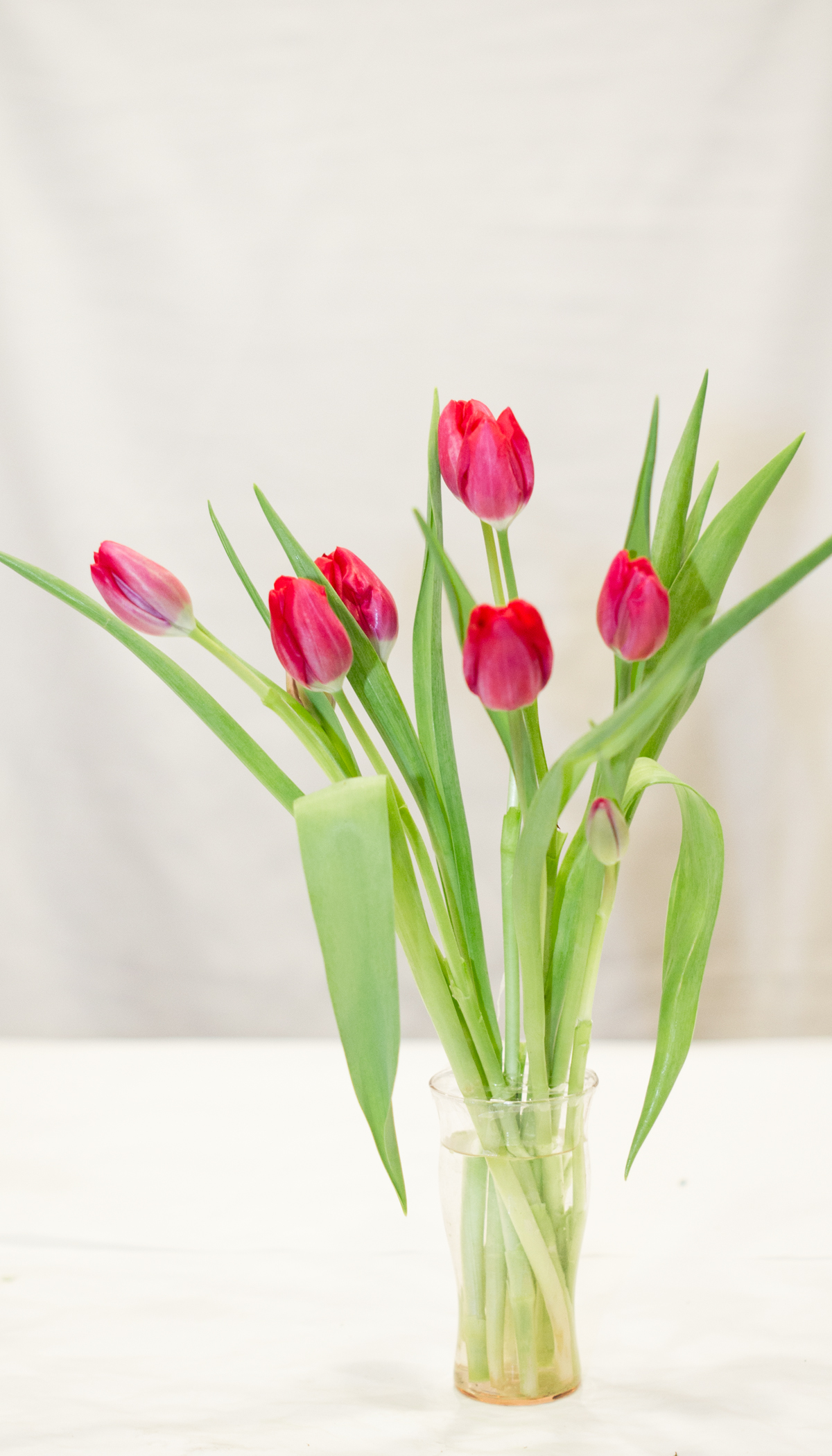 How to Arrange Flowers like a Pro Paint Yourself A Smile