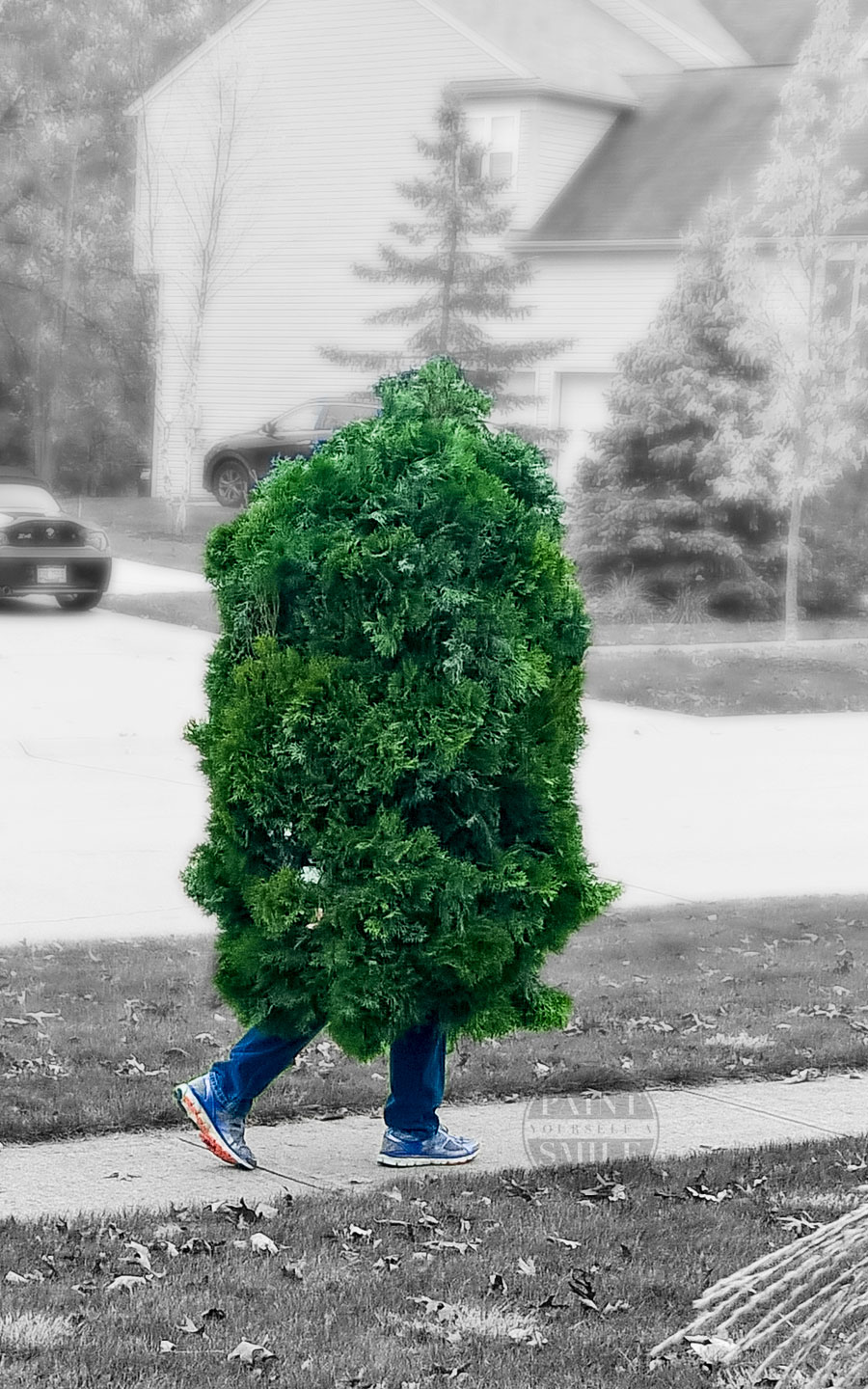 "DIY Walking Bush / Shrub Halloween Costume. Simple ""How to"" Instructions to make this creative plant costume It's easily my son's all-time favorite."